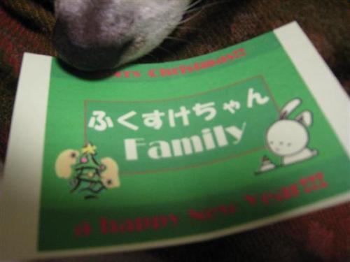 20101212 115 (Small).jpg